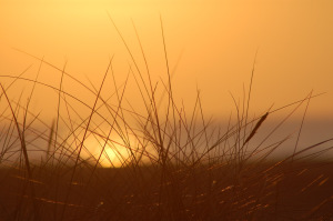 Sunset Over Holme Beach.